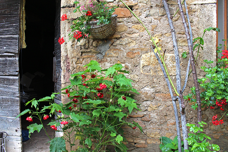 A French Countryside Birthday - Flowers 2