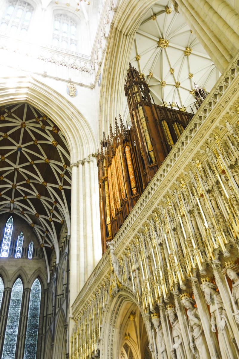 The Lights of York Minster - Orgue